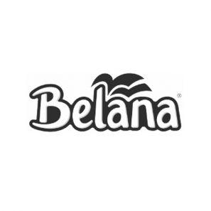 Белана Хотел - Тоал.Хартия- цел. 3 пл./94 къса (16 ролки/пакет) (249CK271)